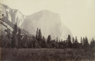 El Capitan (3600 Feet) from the Foot of the Mariposa Trail