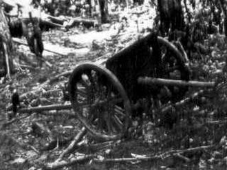 Carlson's patrol - Japanese gun captured by the raiders