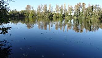 Denham Lock Wood - Carp Lake from Denham Lock Wood