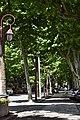 Castelnaudary - Cours de la République.jpg