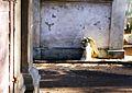 Cemetery Witkowo, angel, 31.10.1993r.jpg