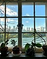 Central Park View from Frick Art Reference Library.jpg