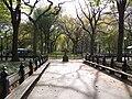 Central Park Walkway.JPG