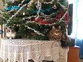 Chats de Noël.jpg