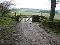Chatsworth Park - Path leaving New Piece Wood - geograph.org.uk - 768727.jpg