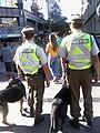 Chilean Police.jpg