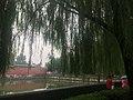 China IMG 0488 (29282518435).jpg