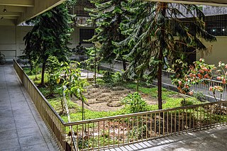 Chittagong University Library garden (07).jpg