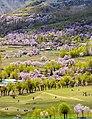Chunda valley skardu baltistan.jpg