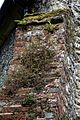 Church of St Peter and St Paul Upper Hardres Kent England - nave buttress detail.jpg