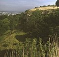 Cliff at Leckhampton Hill - geograph.org.uk - 1191524.jpg