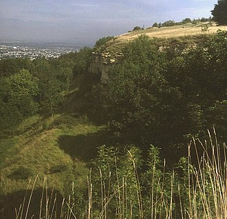 Leckhampton Hill and Charlton Kings Common - Image: Cliff at Leckhampton Hill geograph.org.uk 1191524