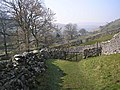Coming into Litton - geograph.org.uk - 380846.jpg