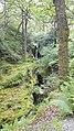 Condado de Wicklow - Glendalough - 20170813155857.jpg