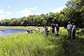 Conservation in Action at Sweet Marsh Wildlife Management Area in Iowa (14963394699).jpg