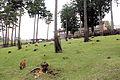 Contact square in TajimaBokujyo.jpg