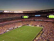 Copa America game between Columbia vs Peru at the MetLife Stadium.jpg