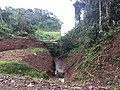 Costa Rica - Nate Shore of Lake Arenal.jpg