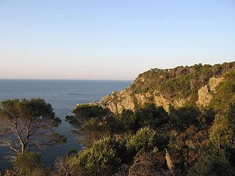 Îles d'Hyères - Image: Cote sud de Porquerolles