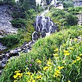Crater Lake National Park - Vidae Falls (21184709861).jpg
