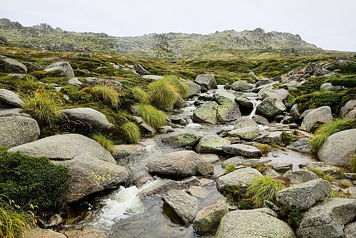 Creek on the Kosciuszko National Park, NSW