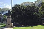 Creswell Gardens RossSmith MemorialOak AdelaideOval-looking-west.jpg