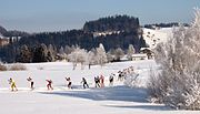 Cross-country skiing (skating style) in Einsiedeln, Switzerland.