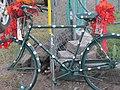 Cycle Oregon 2012 (7967960592).jpg