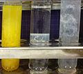 DSC01974 - Zinc (II) reactions.JPG