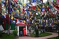 Darjeelingflags.jpg