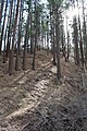 Davis Creek Park - panoramio (29).jpg