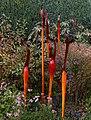 Denver Botanic Gardens 11-2 (15761255816).jpg