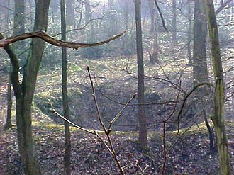 Middleton, Leeds - Depression or bell pit, evidence of early coal mining in Middleton Woods