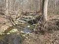 Diabase of Boyds Sill Hoyles Mill Trail 2021.jpg
