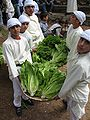 Distributing Lettuce at the 2006 Artas Lettuce Festival.jpg