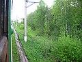 Dmitrovsky District, Moscow Oblast, Russia - panoramio (71).jpg