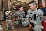 Dog and owner help relieve battle stress for deployed soldiers DVIDS479224.jpg