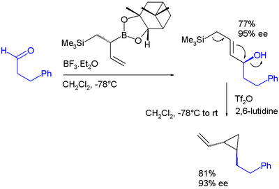 Double allylation reagent based on boronic ester