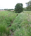 Drainage ditch, Norbury meres - geograph.org.uk - 190341.jpg