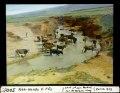 ETH-BIB-Vieh-Herde E. Fès-Dia 247-05005.tif
