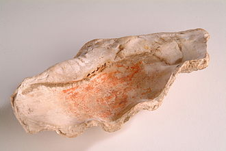 Giant clam - Piece of giant clam shell used as an ancient Egyptian paint holder.