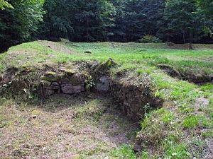 Zangentoranlage (östlich) am Waldrand südlicher Wall