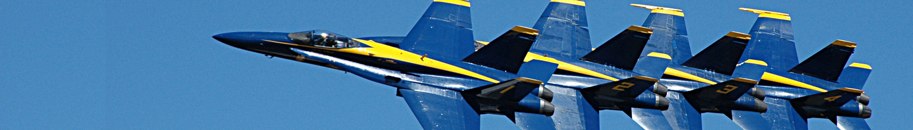 U.S. Navy Blue Angels team who winter in El Centro.