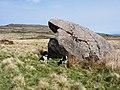 Erratic boulder - geograph.org.uk - 420465.jpg