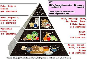 Low-fat diet - USDA's Food Pyramid