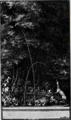 Fable 35 - Le Renard & le Corbeau - Le Labyrinthe de Versailles - page 117.png