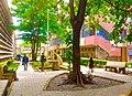 Faculty of Environmental Design ABU University.jpg