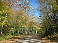 Fall Country Back Road - panoramio.jpg