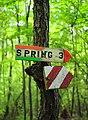 Falling Spring (1) (9528386740).jpg