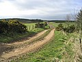 Farm track - geograph.org.uk - 360523.jpg
